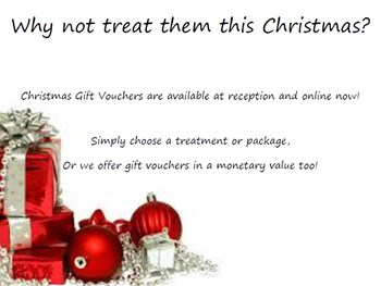 Why not treat them this Christmas